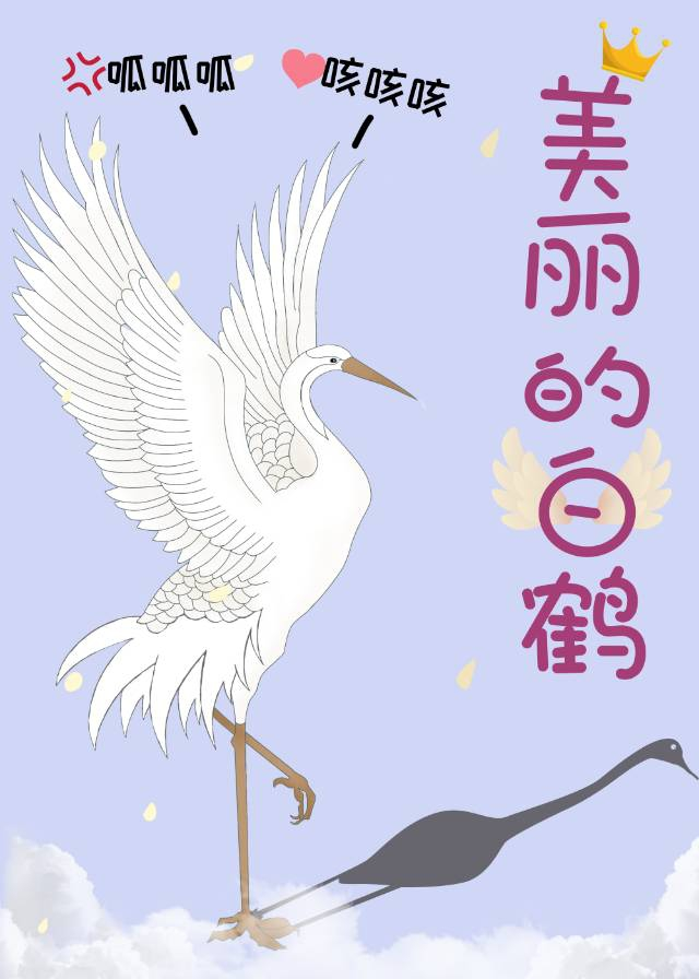 美麗的白鶴