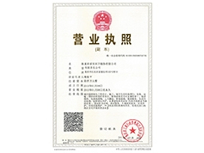 广西外汇投资理财/营业执照